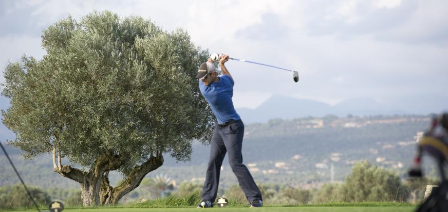 PGA Professional Aufschwung